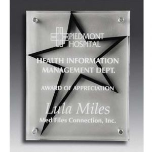 Star Stand Out Acrylic Award Plaque