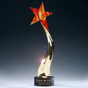 Blazing Star of Accomplishments Award