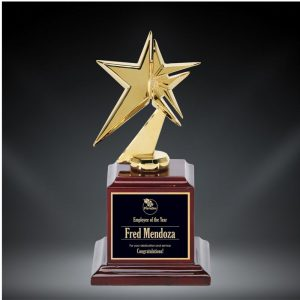 Star of Stars Award