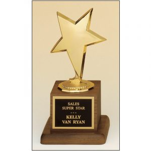 gold star award