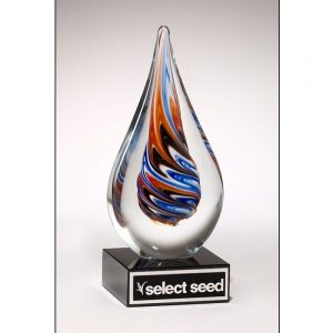 Multi Colored Whirlpool Art Glass Award