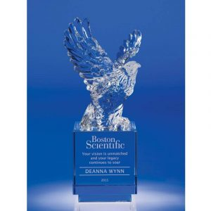 Crystal Eagle Flight Award
