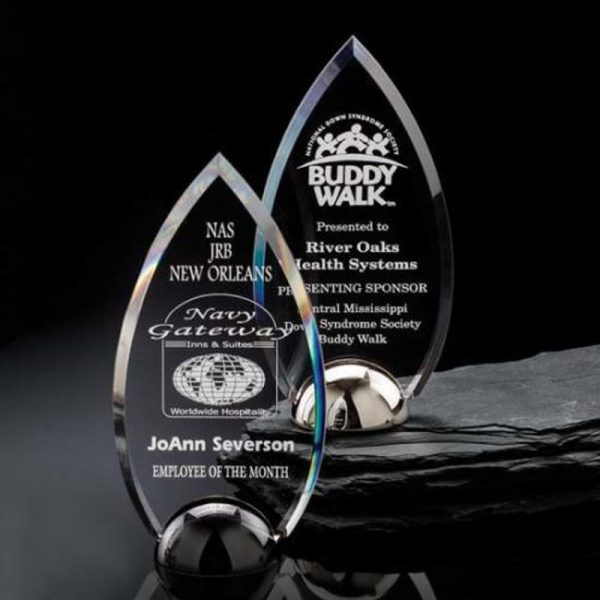 Contour Hemisphere High Polished Nickel Acrylic Award