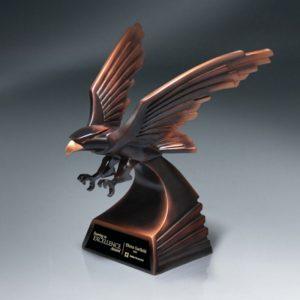Bronze Modern Eagle Flight Award