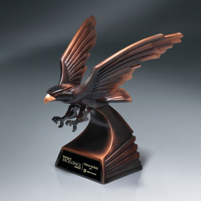 Bronze Modern Eagle Flight Award