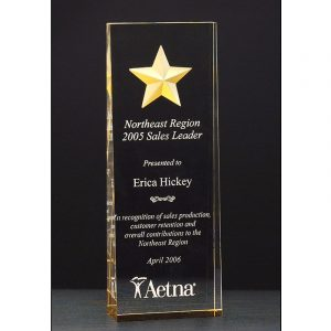 Gold Star Acrylic Award