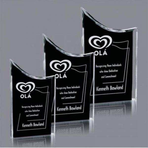 Black Acrylic Plunge Award