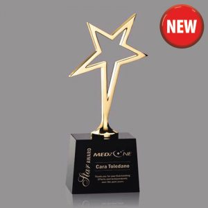 Contemporary Star Performer Award