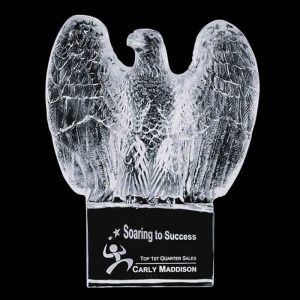 Optical Crystal Eagle Magnificum Award