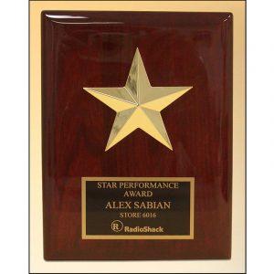 Gold Star Performer Award Plaque