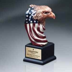 Eagle Head Painted American Flag Award
