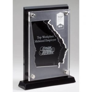 State Outline Laser Cut Acrylic Award