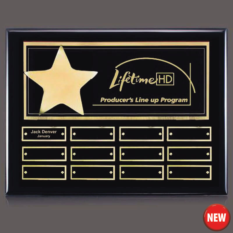 Gold Star 12 Plate Leadership Award Plaque