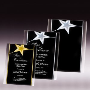 Shining Star Acrylic Easel Plaque Award Features Free Freight